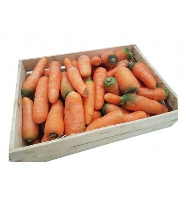 Морковь красная 1 кг