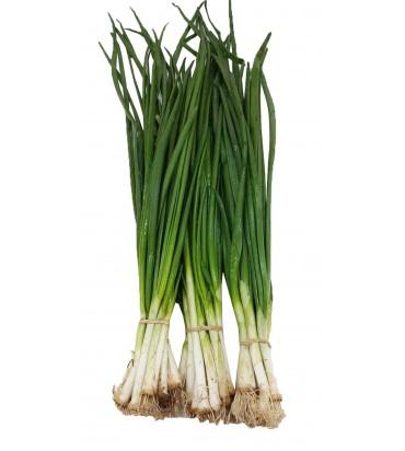 Зеленый лук 1 пучок