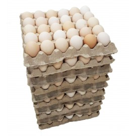 Яйца 1 упаковка(30шт)