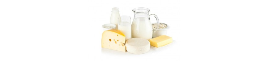 Молочные продукты/Яйца купить c доставкой по всему Ташкенту