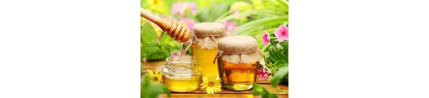 Купить мед в интернет магазине Ташкента