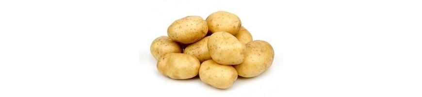 Картошка етказиб бериш билан Gomart.uz