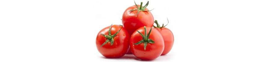 Томаты и помидоры в Ташкенте купить c доставкой - Gomart.uz
